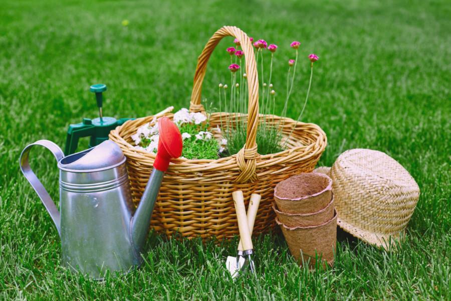 Virág és kerti eszközök